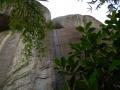 Cave V guano harvesting (2)